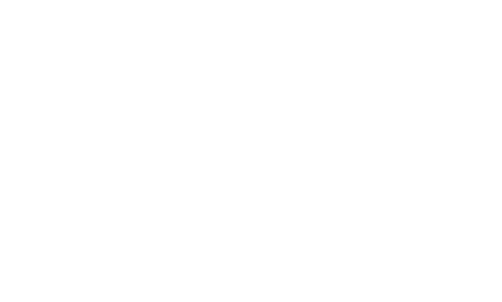 AmLogo2